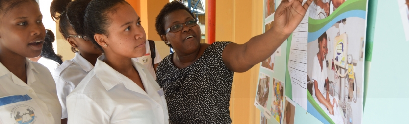 Nursing profession promoted in roving exhibition